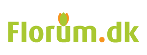 Florum.dk hjemmeside design